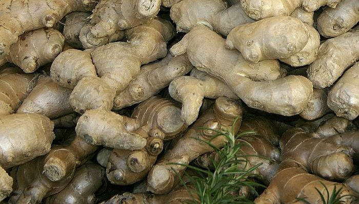 ginger-root-zingiber-officinale-img-e1474029431828.jpg